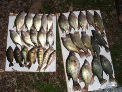 How early in spring for gills and crappies page 2 ohio for Crappie fishing ohio