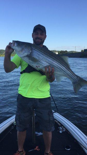 Watts bar lake ohio game fishing your ohio fishing for Watts bar fishing report