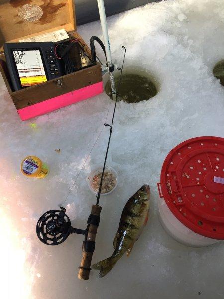 Cheap diy ice depth finder ohio game fishing your ohio for Cheap ice fishing flasher